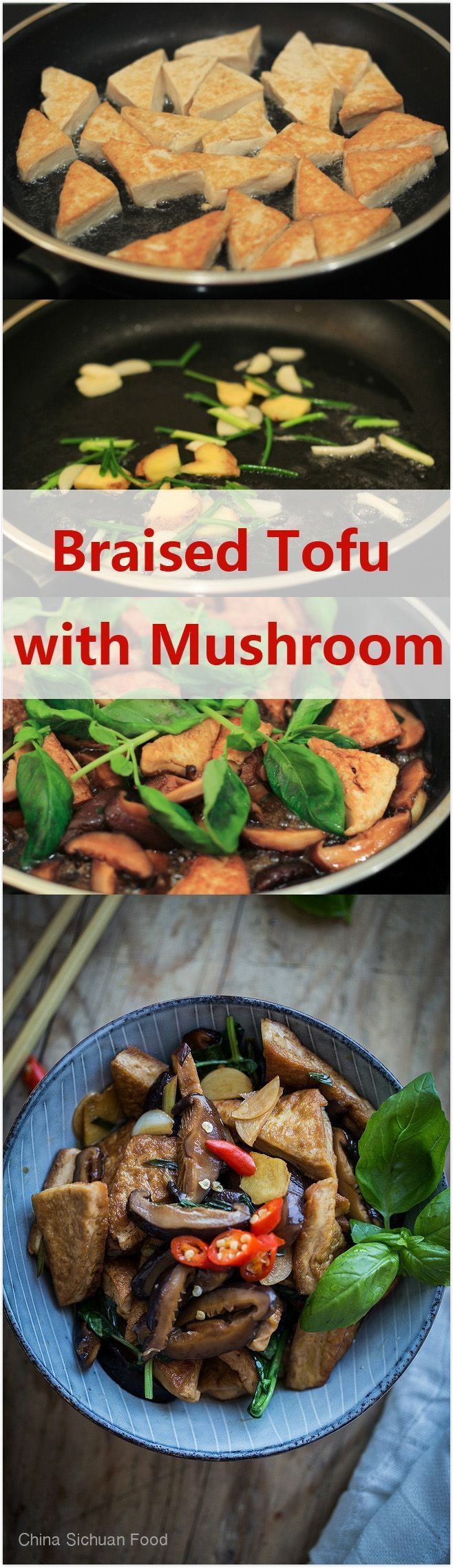 Braised Tofu with Chinese Mushroom 丨China Sichuan Food