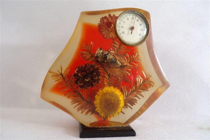 thermomètre vintage en lucite avec inclusion cigale vintage vintage france inclusion insectes  cabinet curiosités  vintagefr bureau de la boutique decobrock sur Etsy