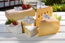 HKI cheeses