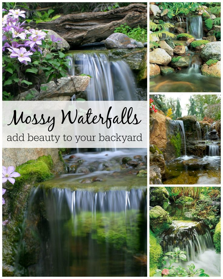Waterfalls are the perfect environment for growing moss