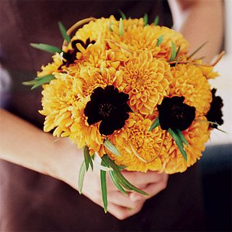 Brides: chocolate-brown cosmos and orange dahlias along with green snowberries