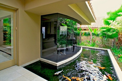 Koi Fish pond. I love the idea of having a big open window that looks over the pond.