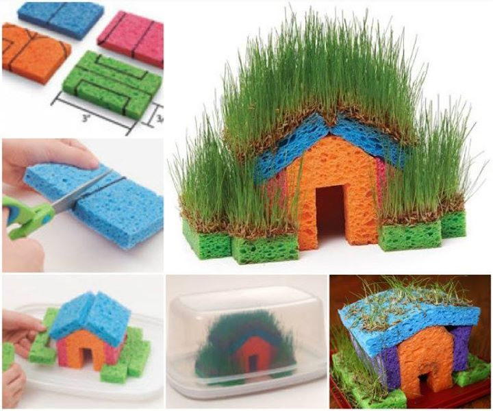 """Between the Earth and Sky or Welcome to the Daisy Garden journeys  New meaning to the word """"Greenhouse""""- here's a fun Chia-style Grass house for the kids to make. This would be a great way to grow some edible sprouts  http://pattersongreenhouses.com/fun-idea-to-do-with-your-kids/"""
