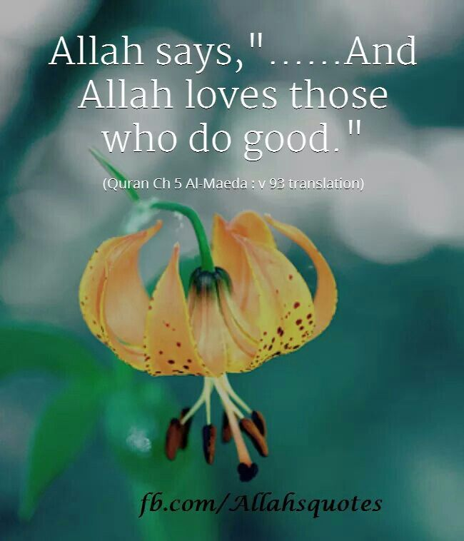 Muslimah Quotes Wallpaper: 81 Best Islamic Images On Pinterest