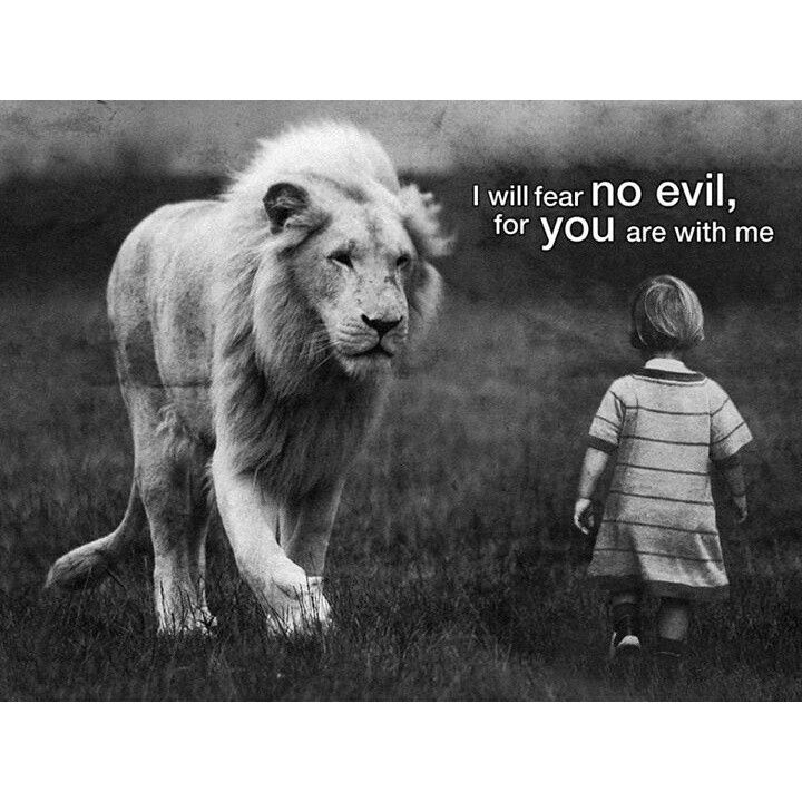 The Lion of the Tribe of Judah is with me!