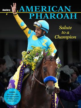 American Pharoah: Salute to a Champion Special Collector's Edition | Blood-Horse Books & Products