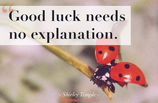 Best Good Luck Quotes