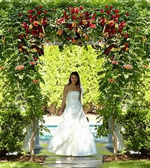 Arbor of Love Archway ... $1129