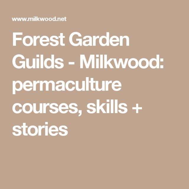 Forest Garden Guilds - Milkwood: permaculture courses, skills + stories