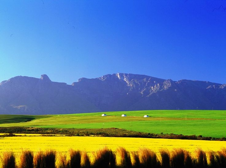 Beautiful South African valley, Swartland, Western Province
