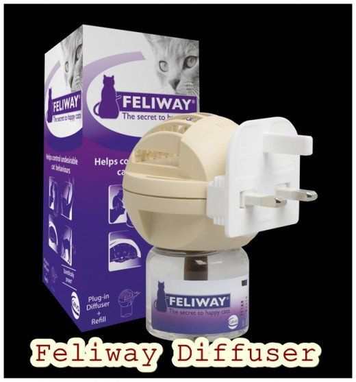 A Feliway Diffuser or Spray could help if you are at your wits-end with unwanted cat behavior such as urine spraying or scratching the furniture.
