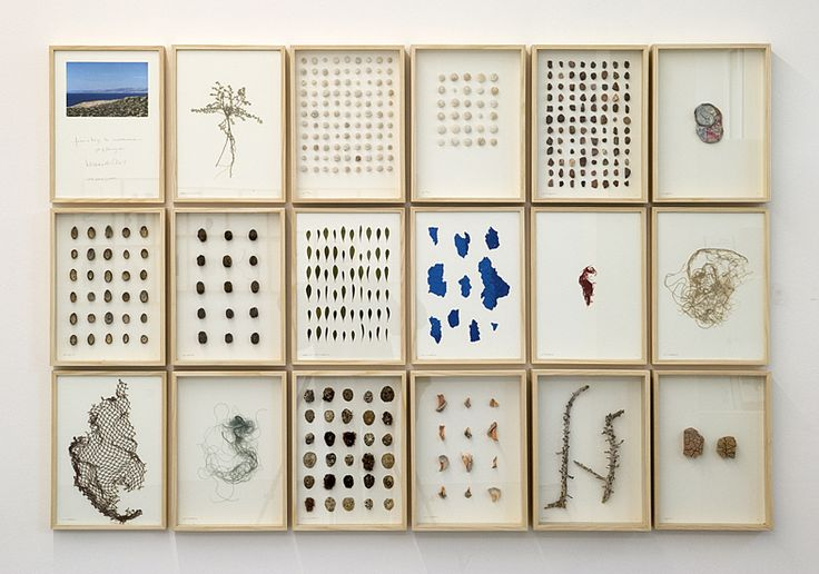 """Herman de Vries, """"journal from a trip to immessouane"""", 2011, 18 parts, 110 x 165 cm, mixed media"""