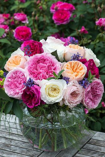 A David Austin bouquet, Order David Austin and other scented & Garden Roses @ www.parfumflowercompany.com