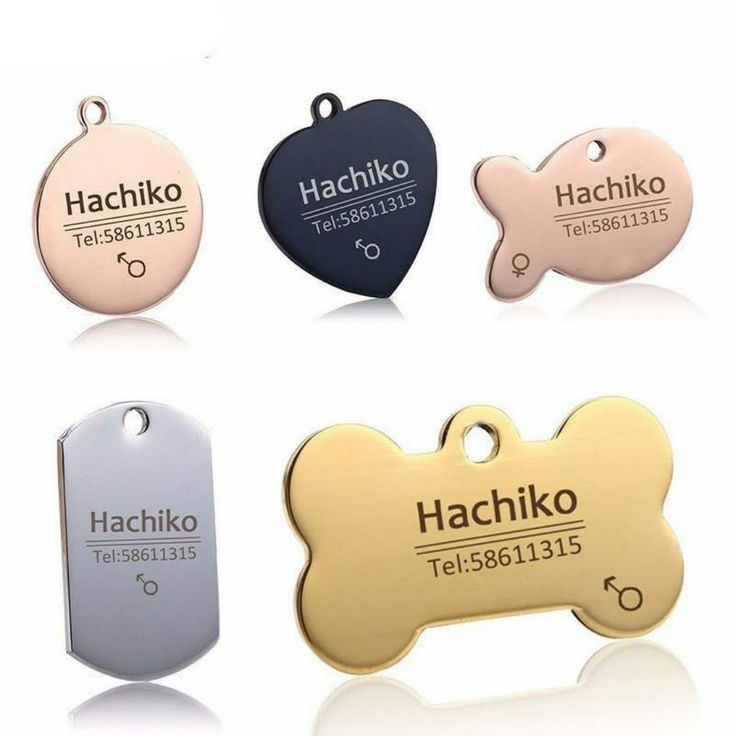 Get some new bling for your dog. The best part about it? It can be personalised!! This fantastic dog name tag is available at The Pet Habitat Store for only $12.95!