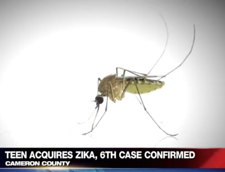 January 3, 2017: Cameron County Teen Infected in Sixth Zika Virus Case