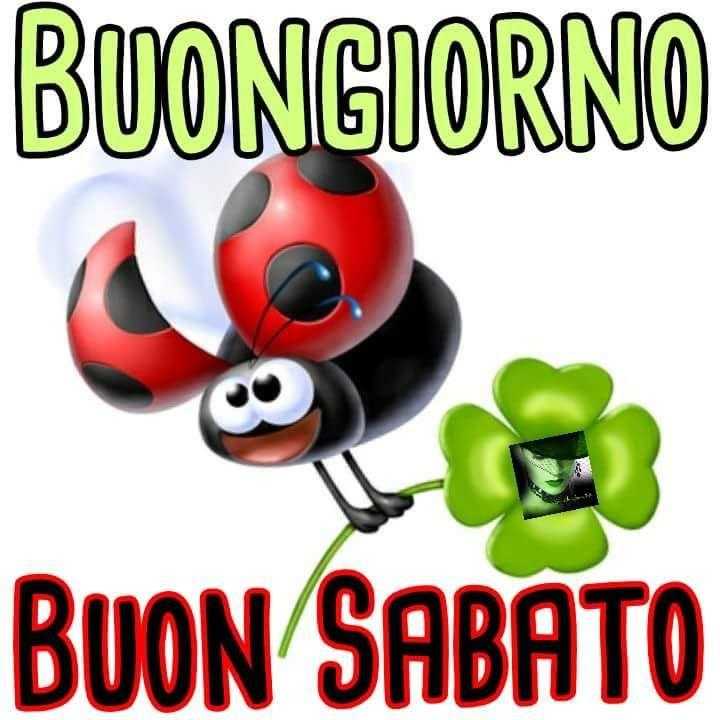 750 best buon giorni images on pinterest adorable for Immagini divertenti buongiorno sabato