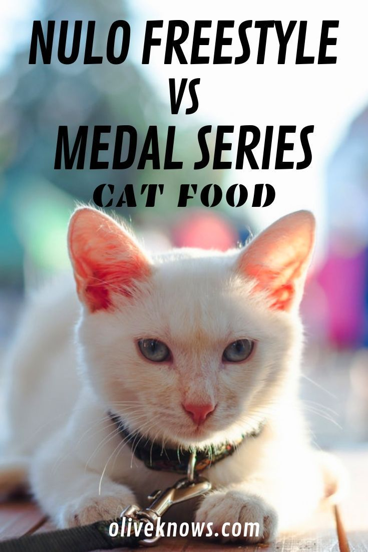 Nulo Freestyle Vs Medal Series Cat Food 2019 Which One Is