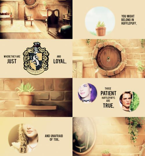 """breakanyballerinasheart:Harry Potter Meme: Favorite HouseHufflepuff: """"Hufflepuff is one of the four Houses of Hogwarts School of Witchcraft and Wizardry. Its founder was the medieval witch Helga Hufflepuff. Hufflepuff is the most inclusive among the four houses; valuing hard work, patience, loyalty, and fair play rather than a particular aptitude in its members. The emblematic animal is a badger, and yellow and black are its colours. The Head of Hufflepuff is Pomona Sprout and the Fat Friar…"""