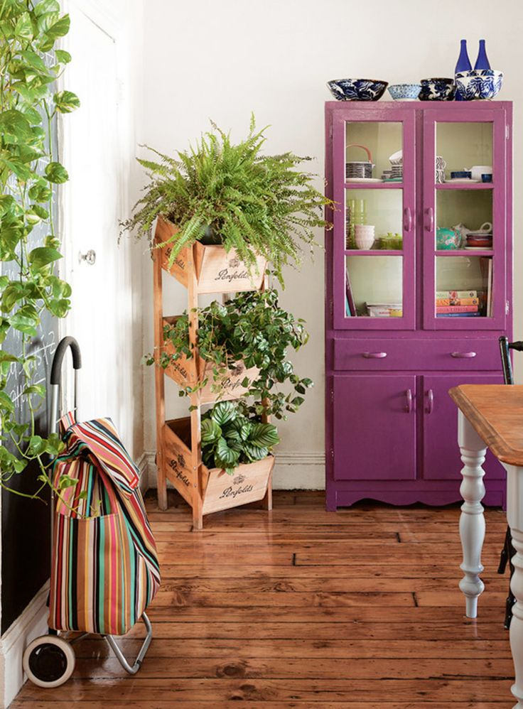 purple cupboard and plants in crates