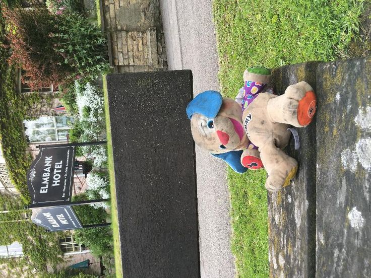 Found on 30 May. 2016 @ Tadcaster Road/The Mount, York. Teddy found outside the Elmbank Hotel. Currently sat on a bench - looks a bit worse for wear, as if it's been out in the rain. Visit: https://whiteboomerang.com/lostteddy/msg/grbihw (Posted by Suzy on 30 May. 2016)