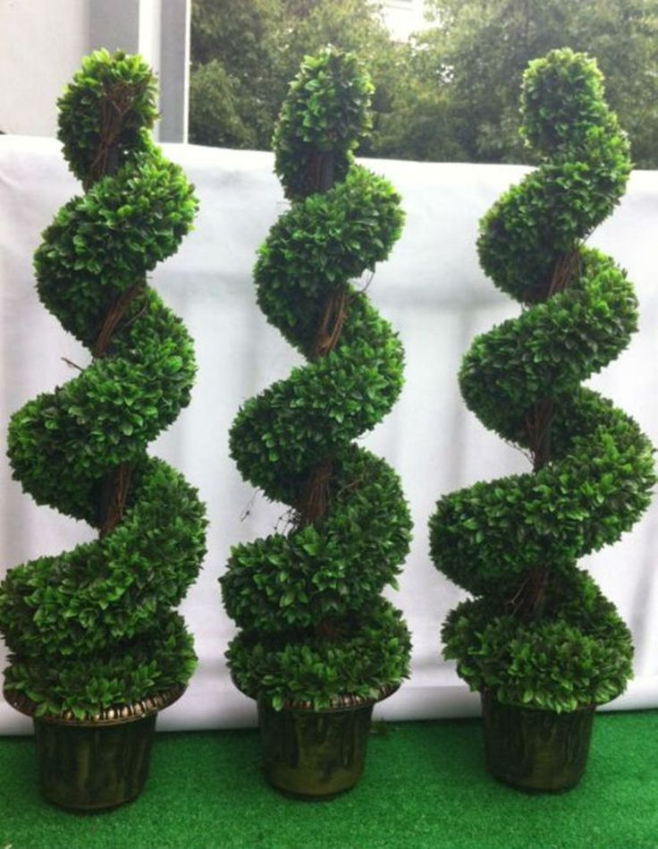best 10 artificial topiary ideas on pinterest. Black Bedroom Furniture Sets. Home Design Ideas