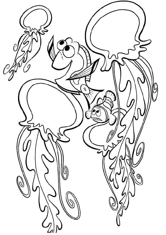Marlin And Dory With Jellyfish Coloring Pages