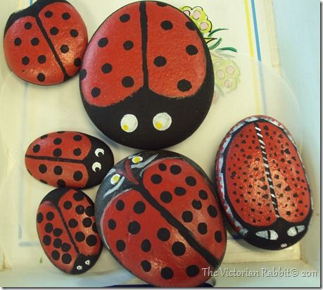 "painted lady bug rocks - another variation is to paint on a variety of ""minibeasts"" and include pipe-cleaner legs by using a hot glue gun."