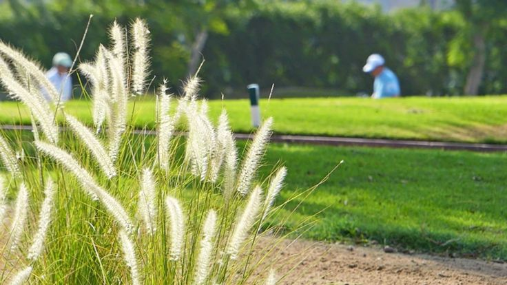 Best Golf Courses, Discounted Tee Time in United States | CHRONOGOLF