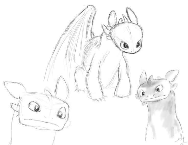 Best 25 Toothless Drawing Ideas On Pinterest Toothless