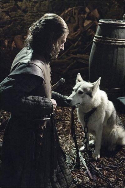 Game of Thrones : photo Sean Bean #gameofthrones #wolf #sacrifice