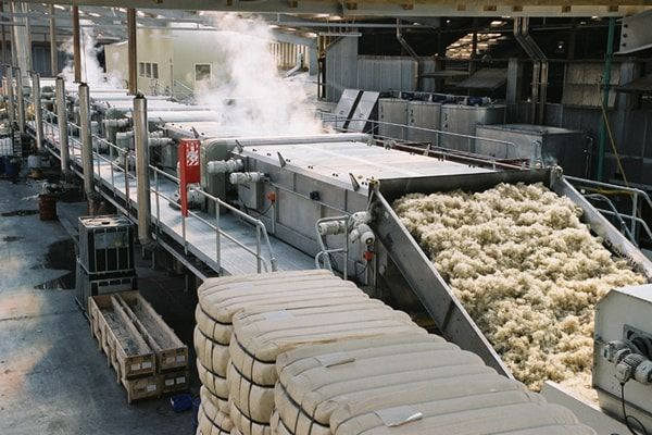 Scouring Process Of Wool Wet Processing Cotton
