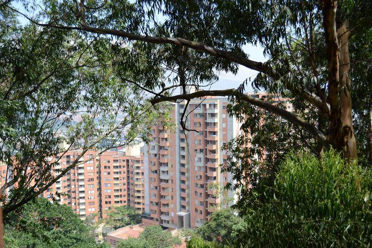 From the apartment in El Poblado