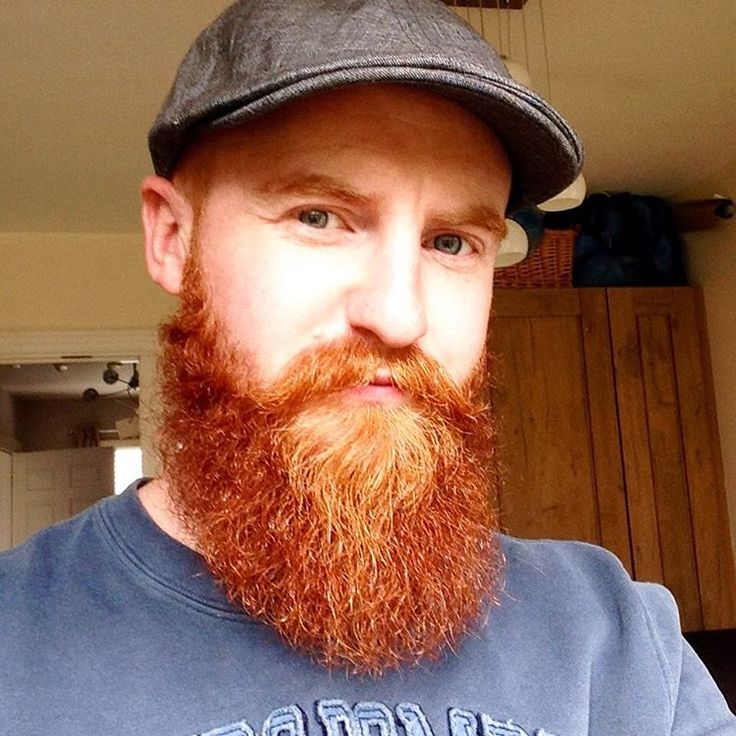 ?the red-bearded baron essay Bring on the red-bearded harry baron's sri sitemap archive video archive topics index mobile apps screensaver rss text-based site reader prints our papers top.