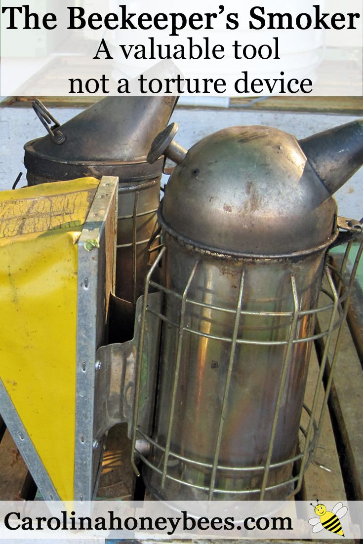 The beekeeper's smoker is not meant to be a torture device. Carolina Honeybees Farm