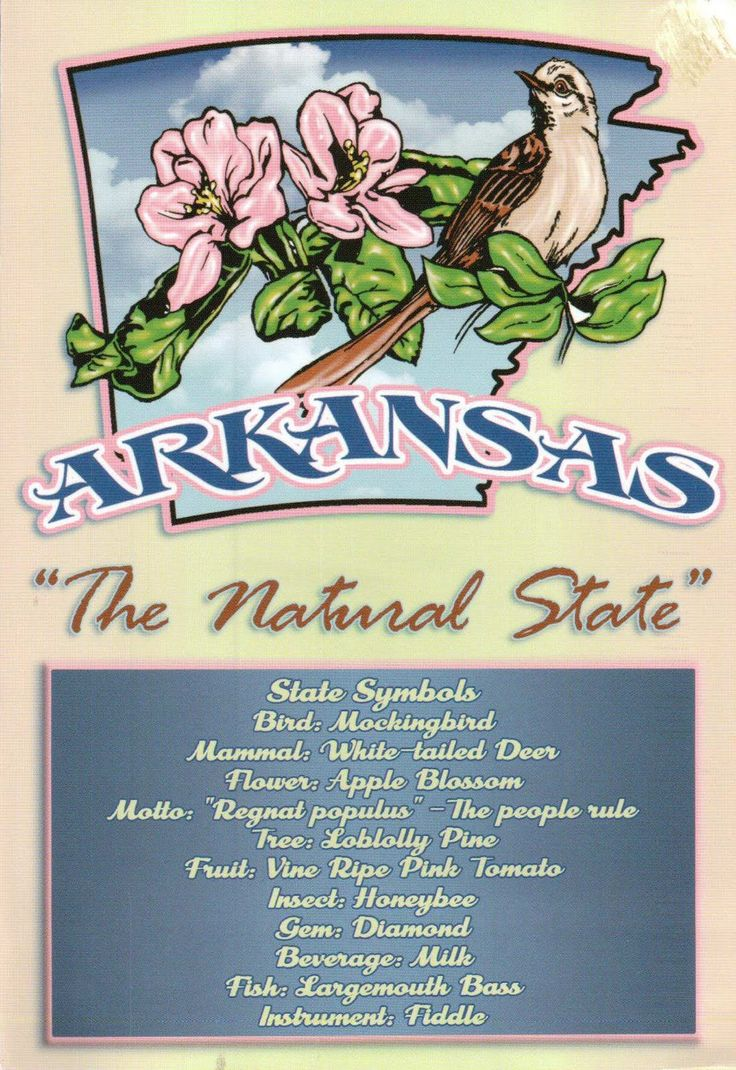 161 best Arkansas images on Pinterest | Arkansas, Birds and ...