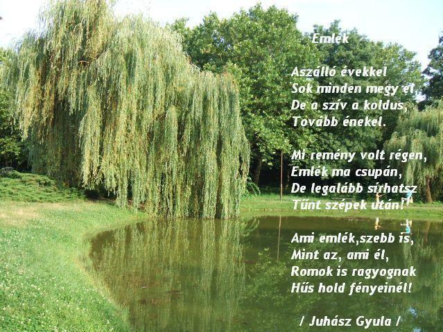 Juhász Gyula - Emlék