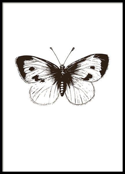 Posters en prints met insecten en dieren | Posters met vlinders en libellen | Desenio.nl