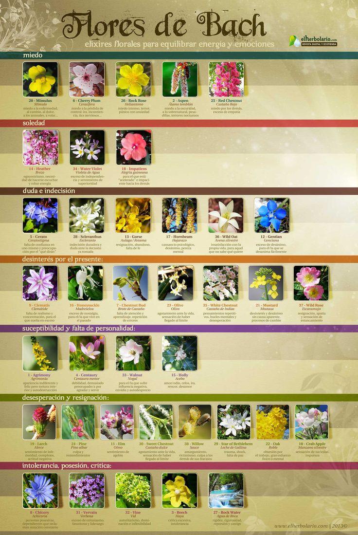 Flores de Bach | www.elherbolario.com