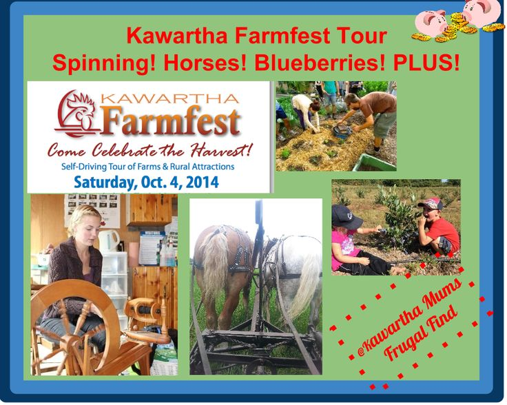 Blogged: Curious About Kawartha Lakes #Ontario #Farming? Visit Kawartha Farm Fest Oct 4!th! Get your tickets today and enjoy a coupon for Kawartha Dairy on Oct 4th!