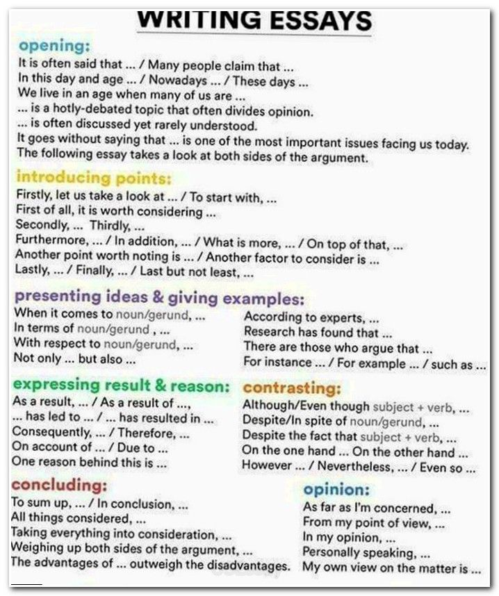 essay writing format introduction   essay introduction essay writing format introduction