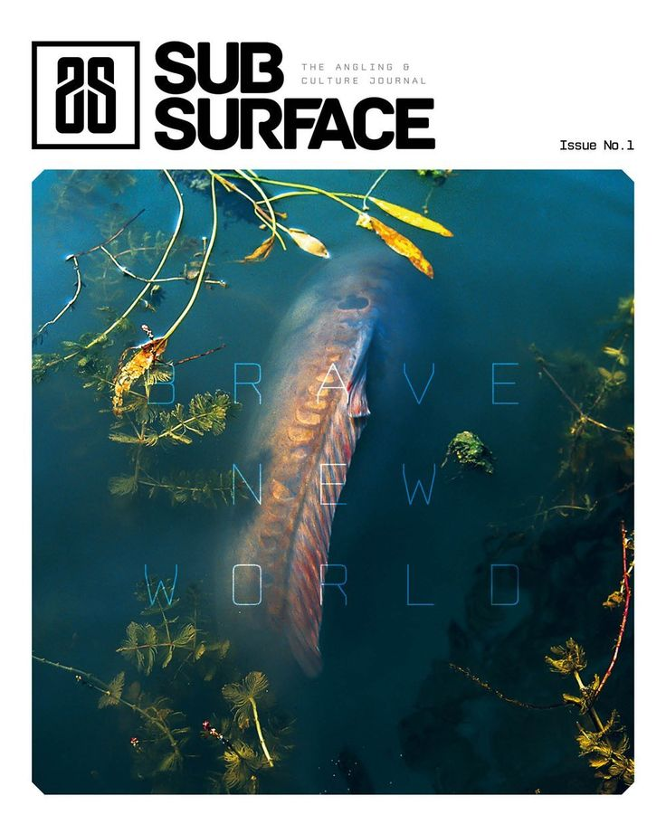 Subsurface Journal: Brave New World 1