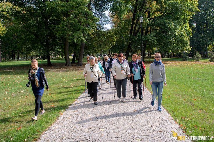 IV Marsz seniora w Skierniewicach [ZDJĘCIA]