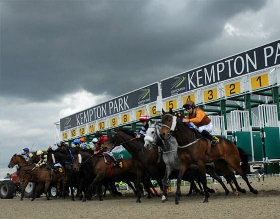 Discover details and horse racing tips from real experts. Win with incredible info about races in Bath, Kempton, Nottingham, Wetherby.