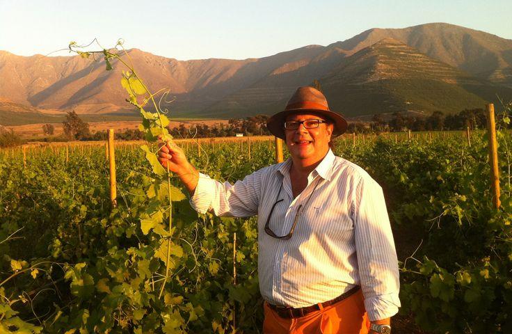Vina von Siebenthal - Chile Premium Wine -