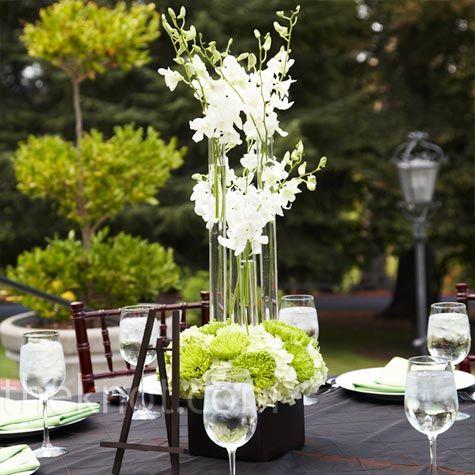 7 best phalaenopsis orchids arrangements images on for Modern centerpieces