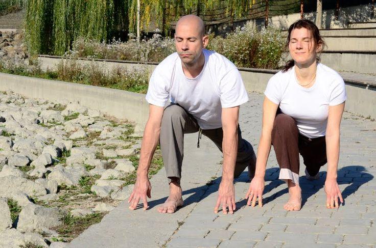 Vitai Kati és Purusa - Kezdő jógatanfolyam  www.eljharmoniaban.hu  #kezdőjóga #hathajóga #jógatanfolyam #jóga #jógabudapest #meditáció #meditációstanfolyam  #jógastúdió #yogabudapest  #yoga #yogabudapest  #eljharmoniaban  #vitaikati #purusa  #yogapose #asana #ászana #stone  #partneryoga #ekapadaprasarasana #ékapádaprasarászana