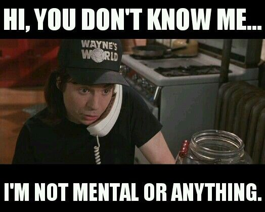 Image result for wayne's world are you mental