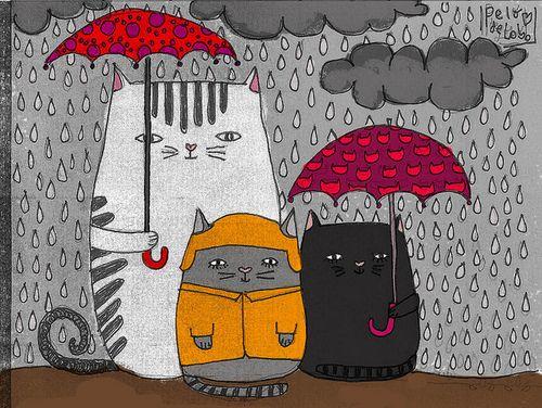 "....""sere la gata bajo la lluvia""... #Plancha"