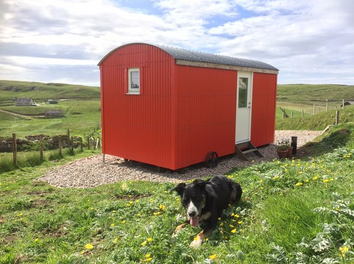 Dog friendly Glamping at the Shepherd's Hut.