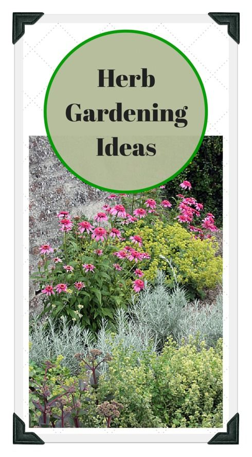 173 Best Images About Vegetable Garden Design Tips Diy On